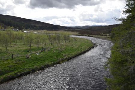 Réveil des rivières au printemps écossais