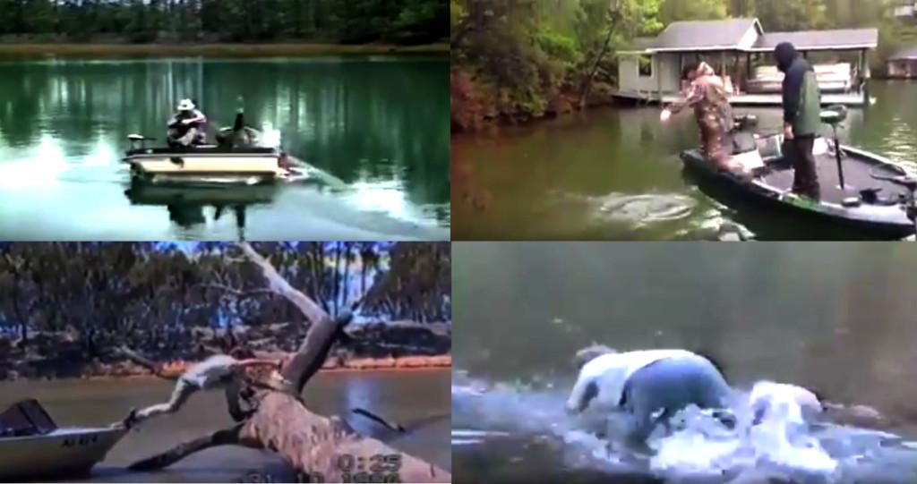 gags pêche pecheurs