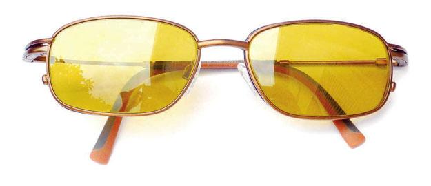 lunette-polarisante
